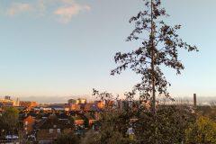 Landscape_Hanna-scaled